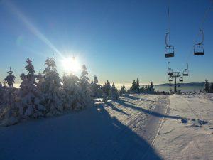 Wyjazd narciarski dla firmy